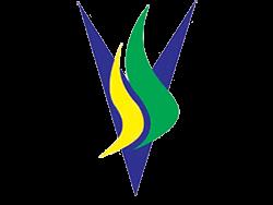 ssv-safv
